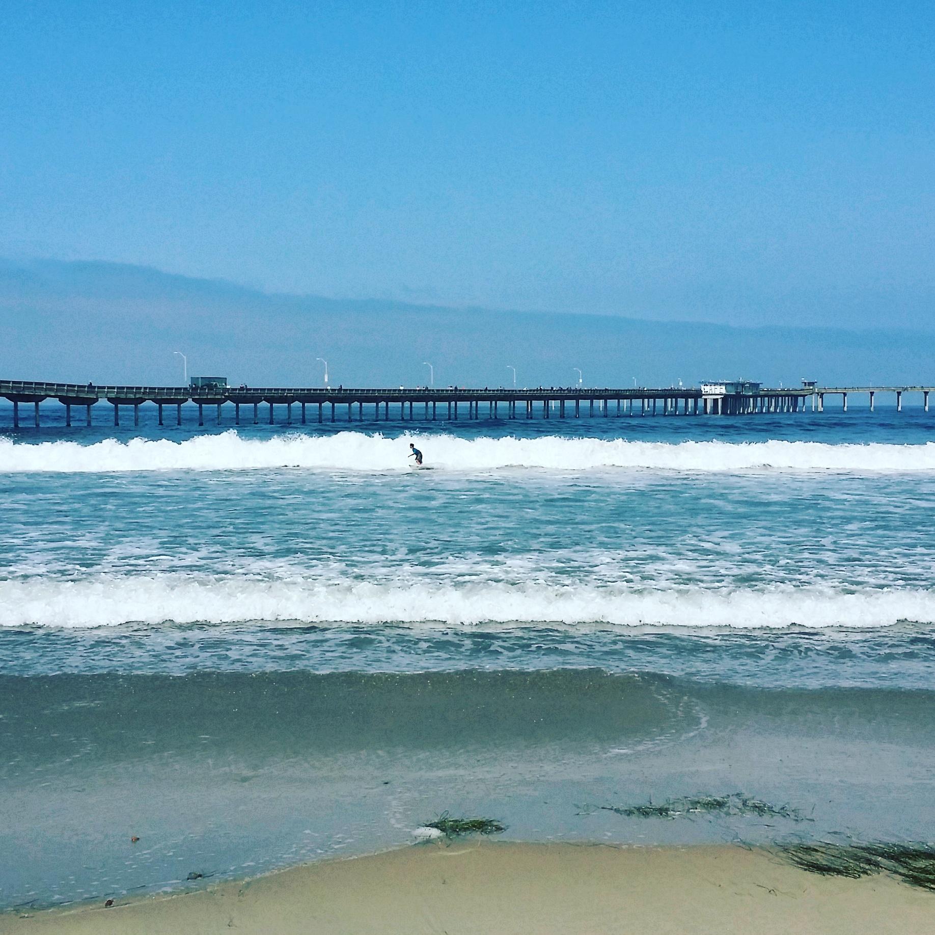 Top 5 Places To Visit In Ocean Beach San Diego Travel Foodie Mom